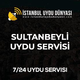 sultanbeyli-uydu-servisi
